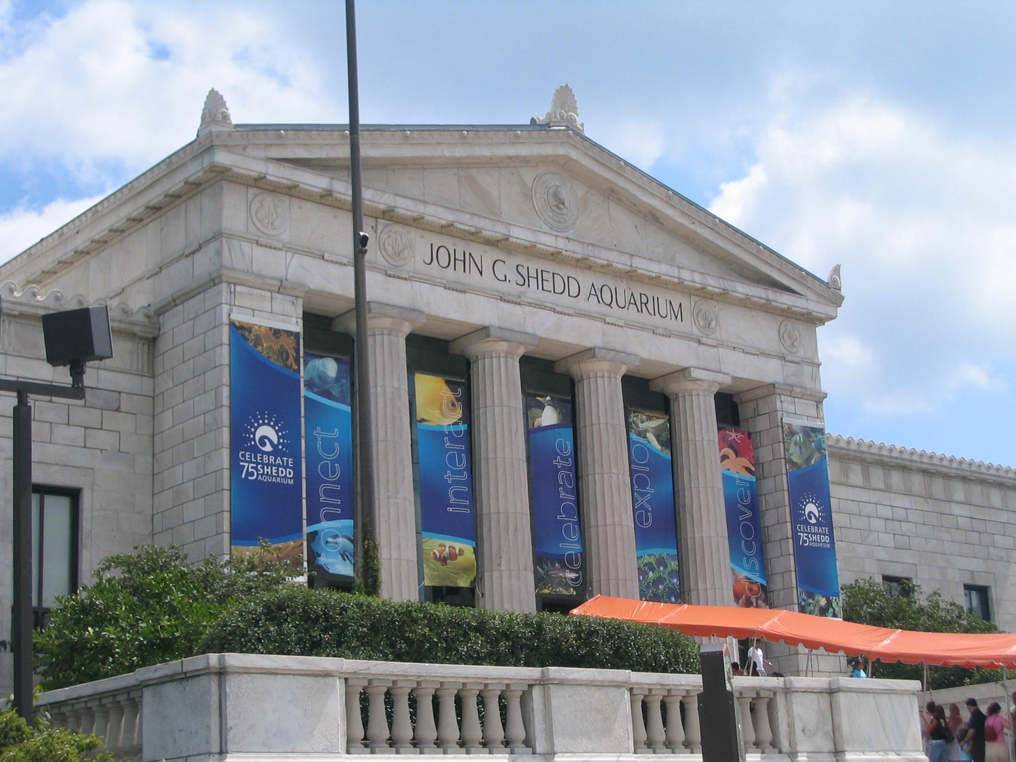 Shedd Aquarium Chicago August 2005
