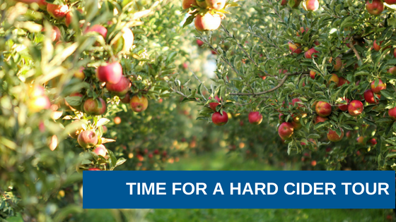 It's Fall! Time for a Hard Cider Tour