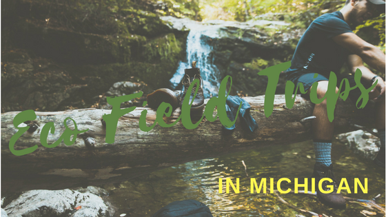 Bugs, Ponds, and Hikes: Eco Field Trips in Michigan